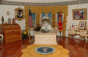 Pres. Bush in the Oval Office