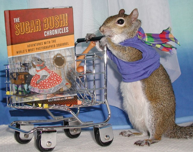 Sugar Bush Squirrel's brand new book has shipped worldwide!