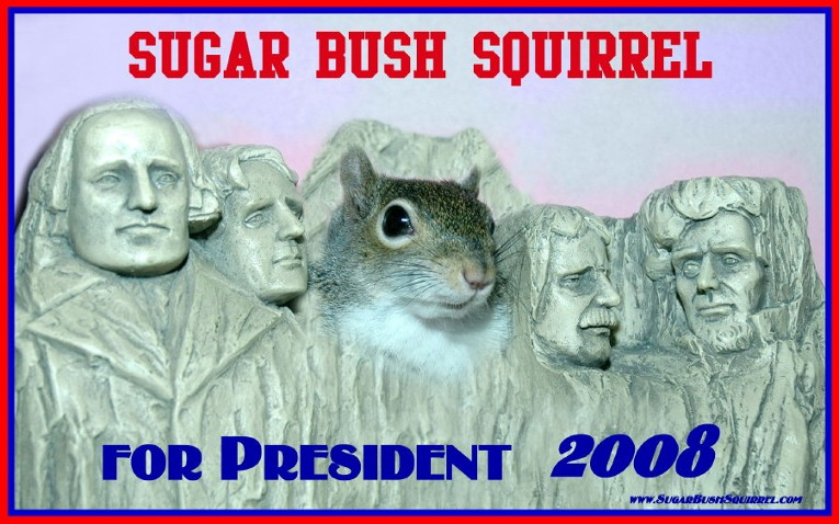 Mt. Rushnut