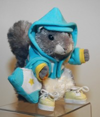 Squirrels in the Hoodie