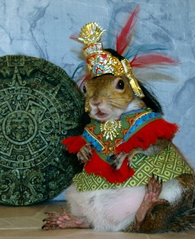 Quetzsquirrelcoatl & the Mayan Calendar