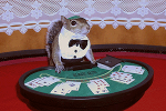 Sugar Bush Squirrel as Black Jack Dealer