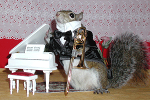 Sugar Bush Squirrel - Trombone Virtuoso