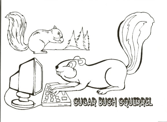 computer squirrel and forest squirrel