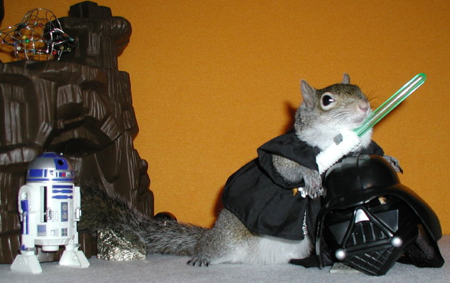 Anutkin Squirrelwalker with lightsaber